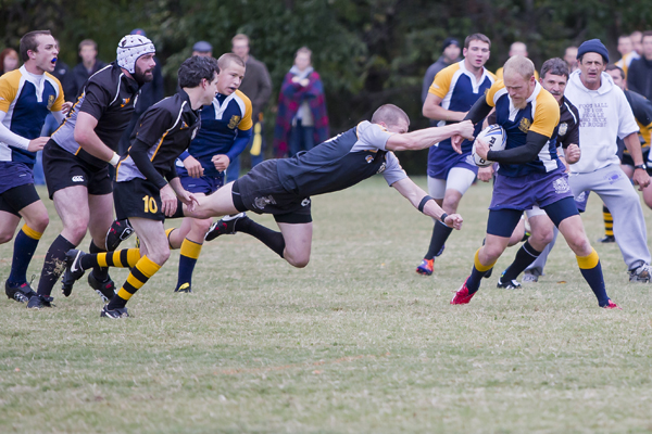 Rugby falls just short of historic win