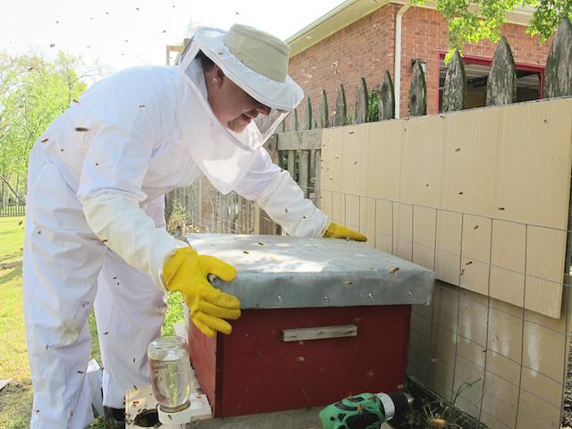 Siloam Springs: Land of honey
